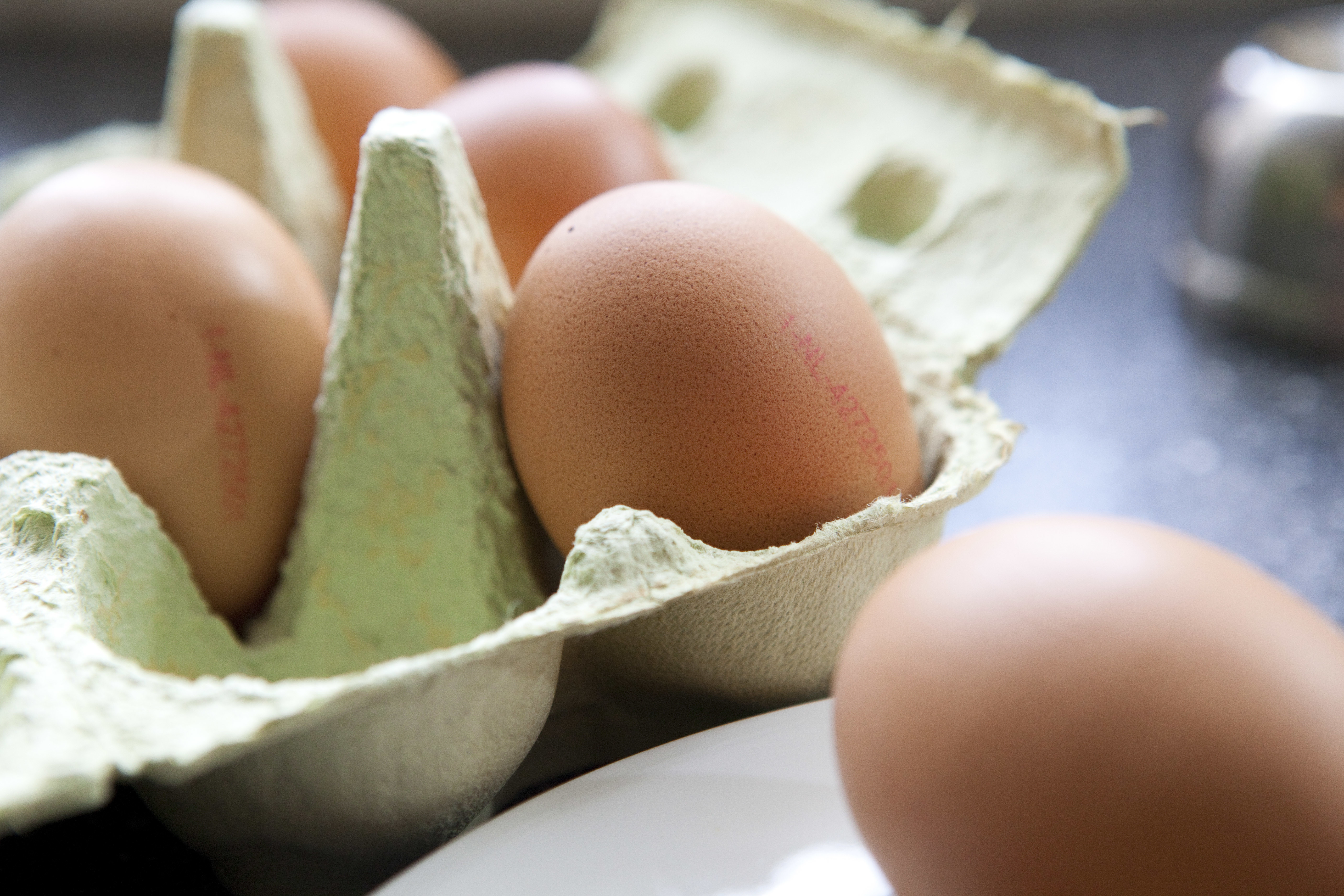 Recyling egg shells, what a cracking idea. Photo: Jan Willem Schouten