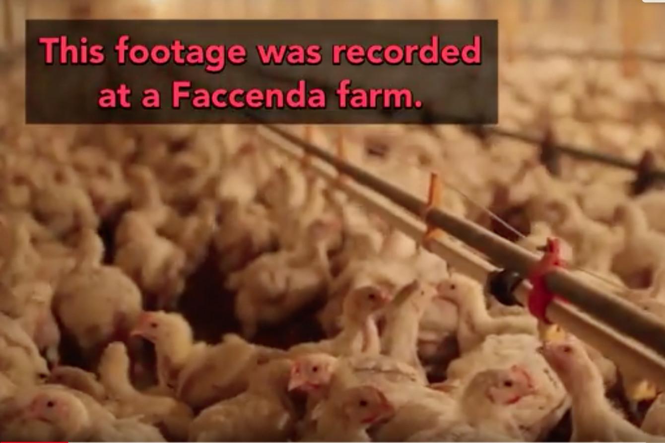 Photo: Faccenda