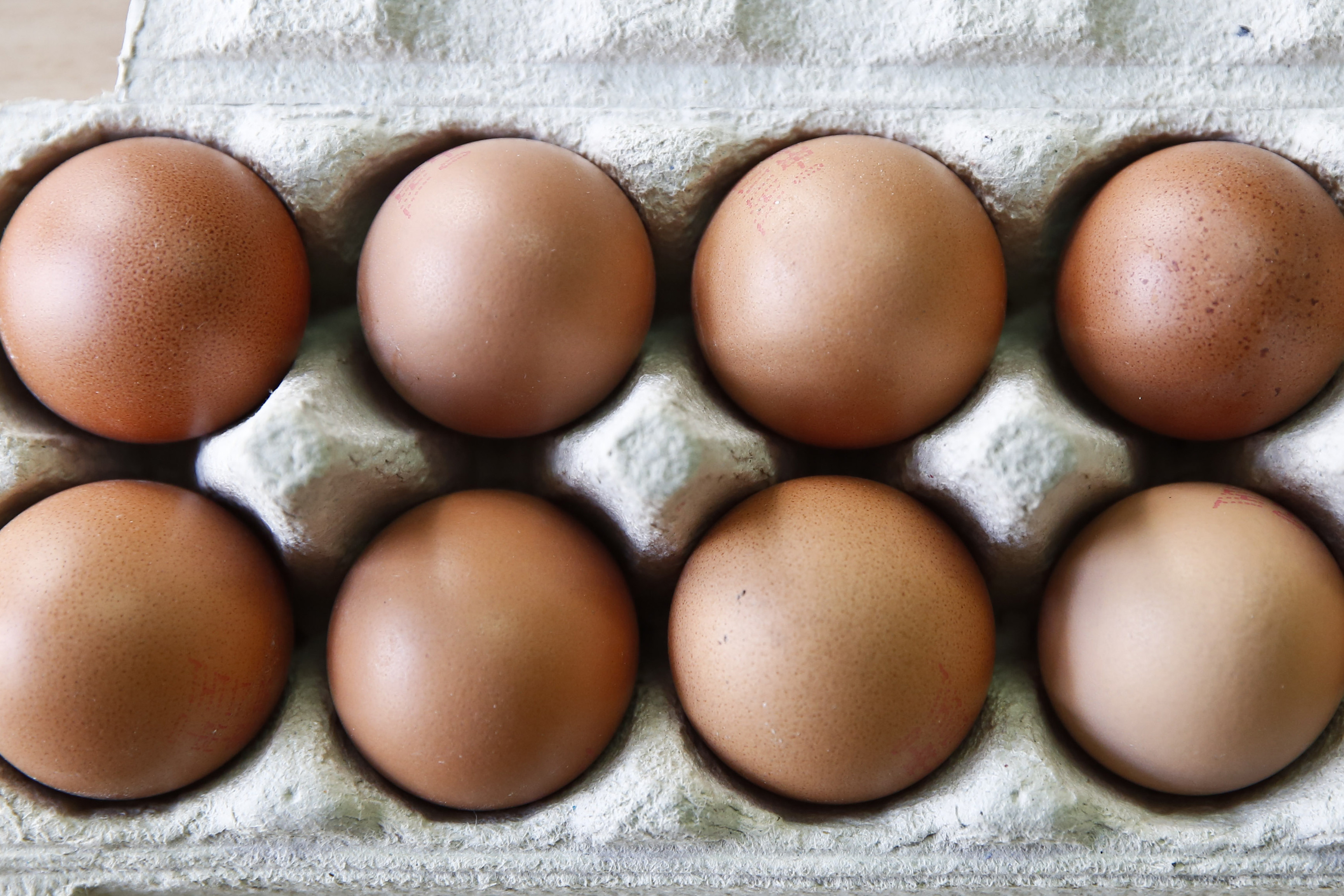 Lancs poultry farmer could lose home to pay court costs. Photo: Zinhua news agency / Rex / Shutterstock