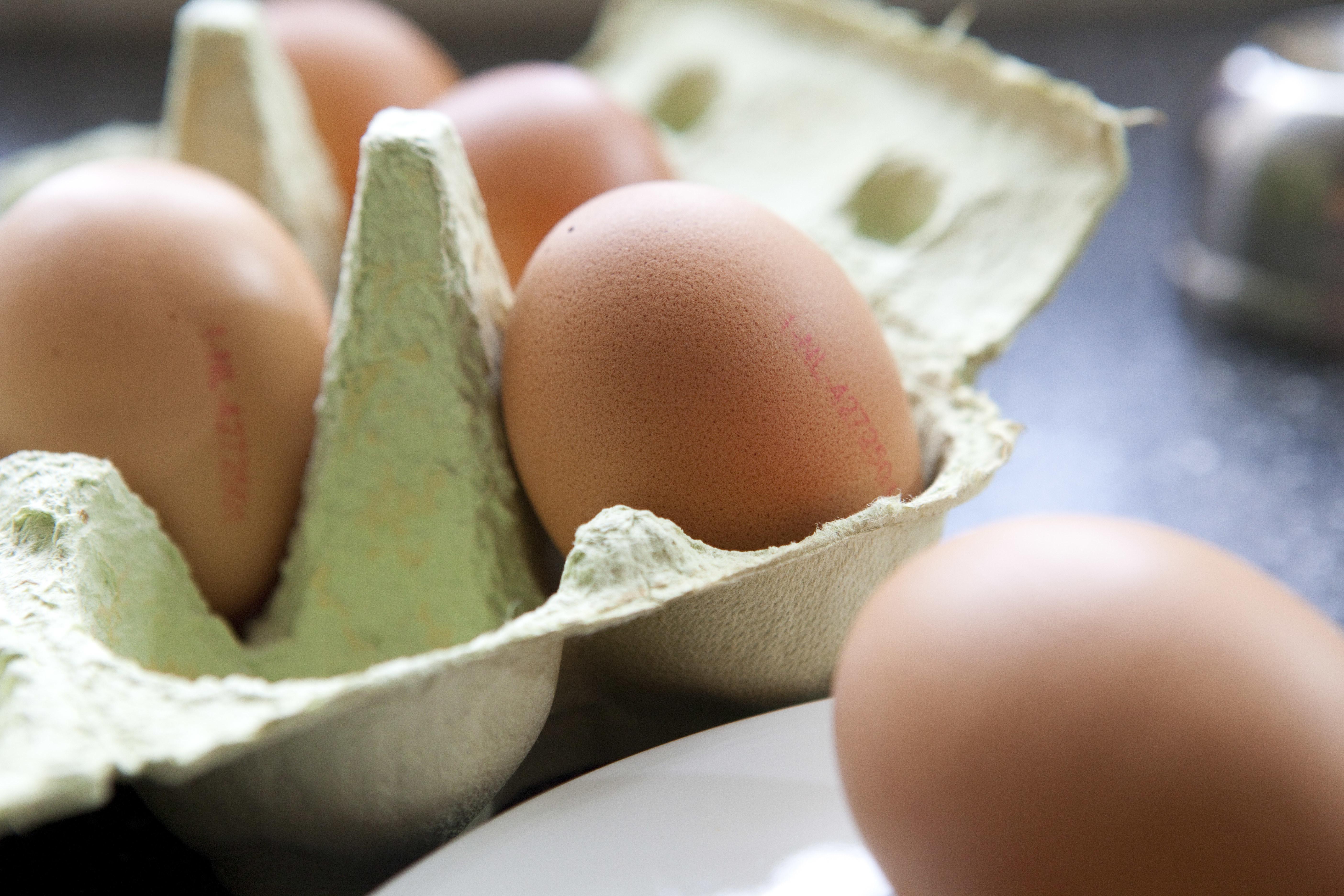 Eggs play key role vitamin D deficiency