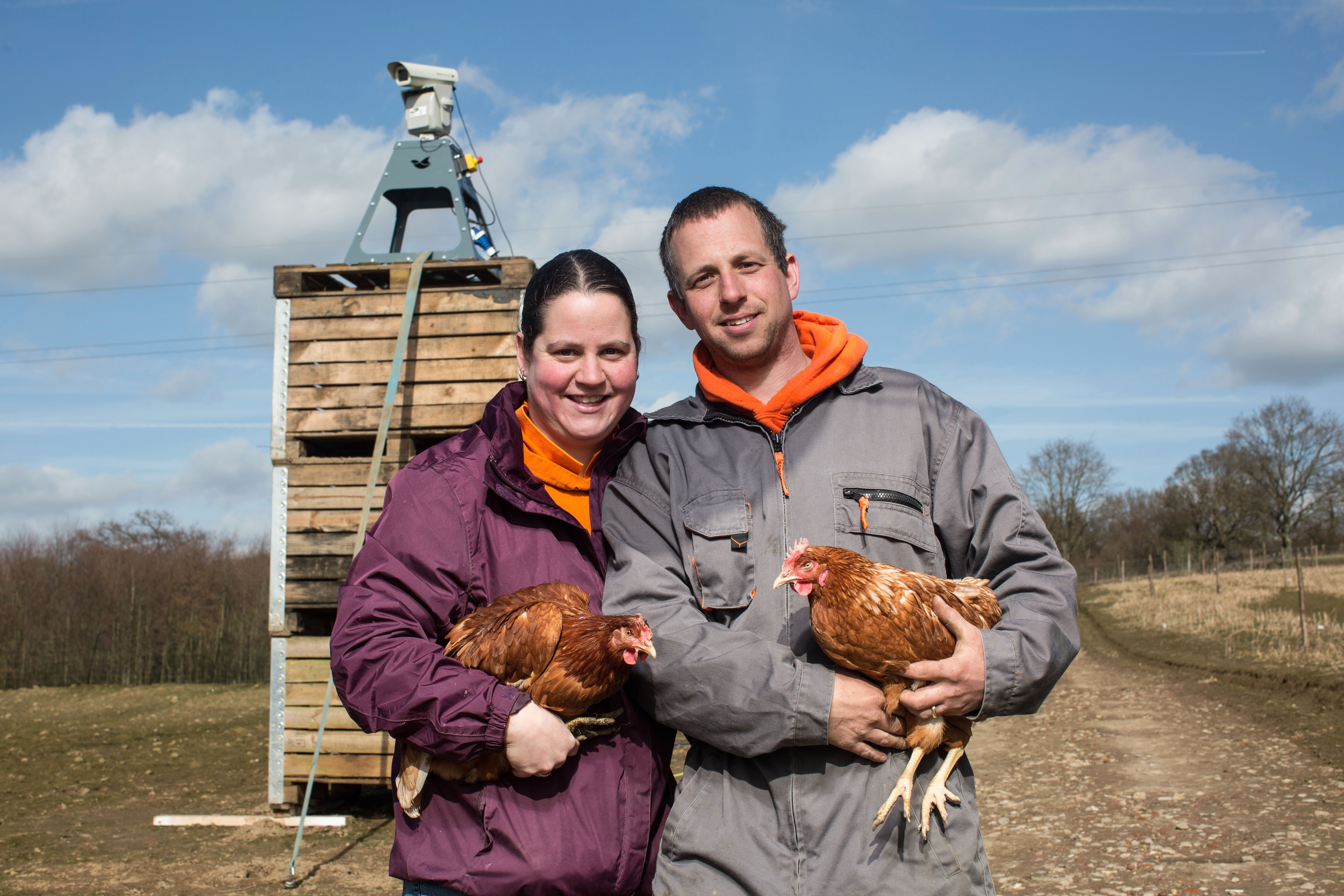 Farm uses lasers to guard its hens from Bird Flu.