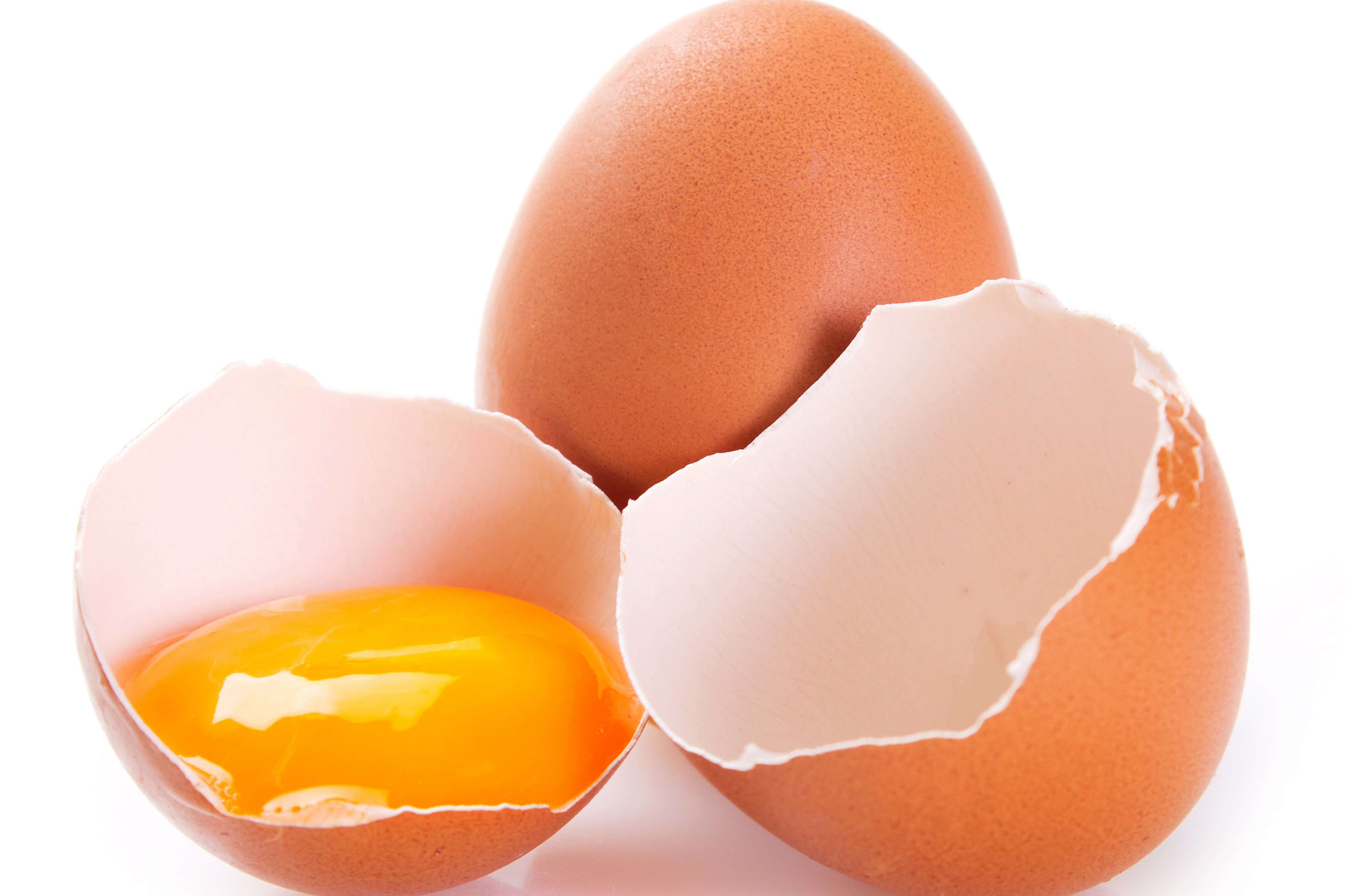 Egg sector lobbies for extension of 12-week derogation. Photo: Shutterstock