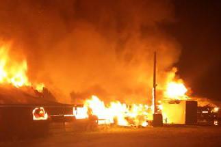 Turkey house razed in suspicious fire