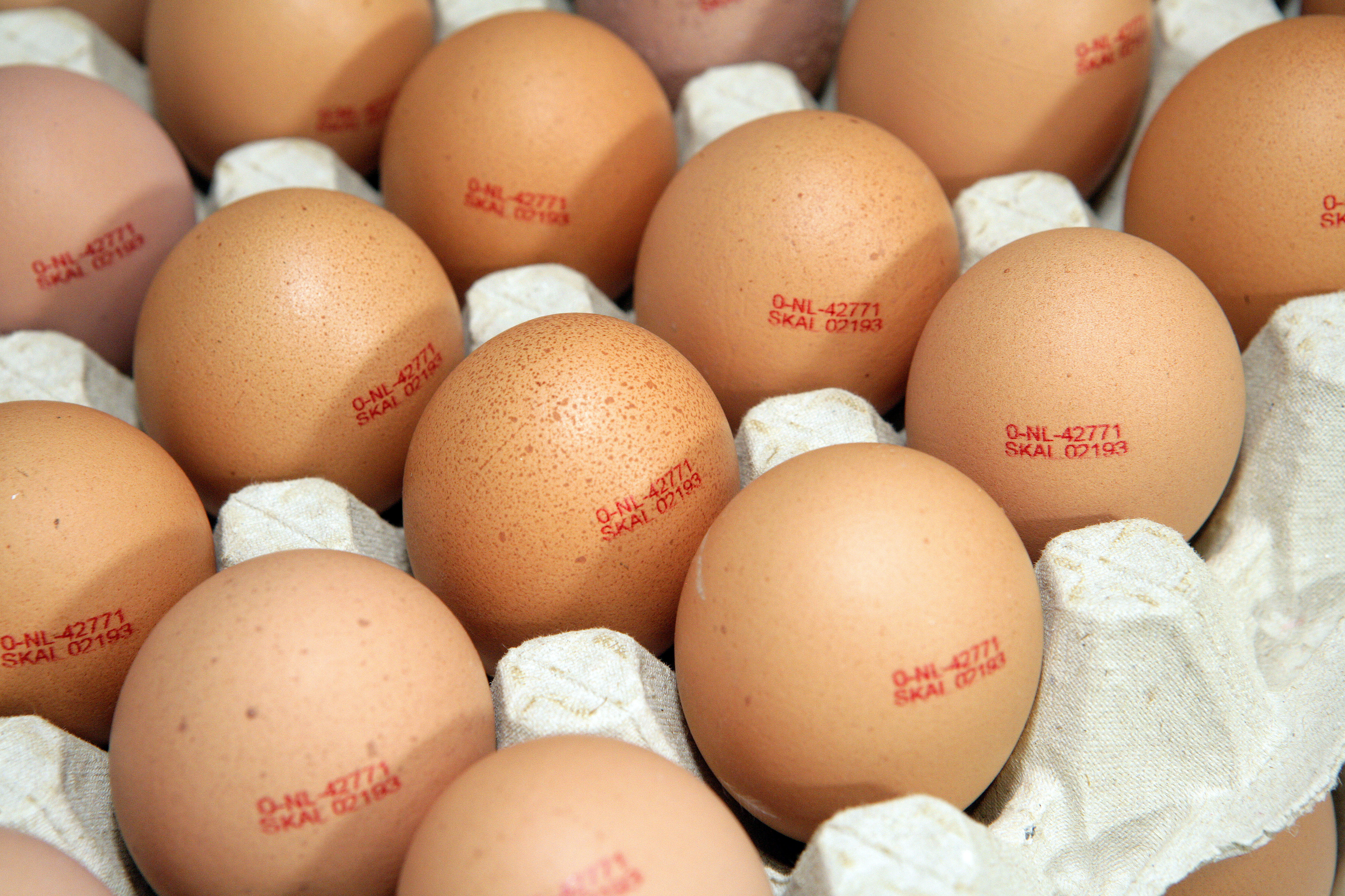 James Gigg is accused of passing off eggs as free-range when they were not. He is also said to have kept more than the permitted number of hens in 2 of his henhouses. Photo: Henk Riswick