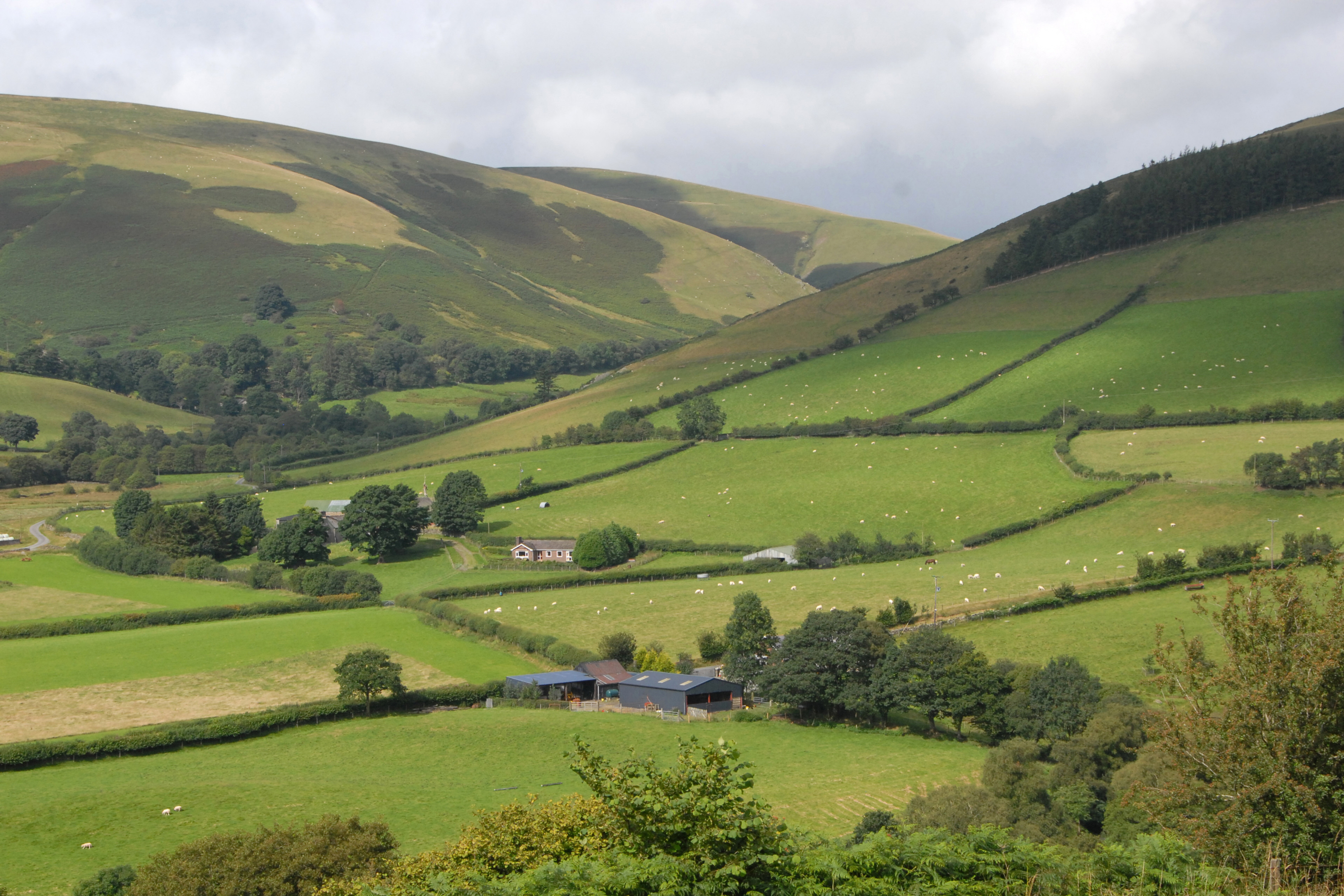 """Campaign for the Protection of Rural Wales claims the geography of much of rural Wales coupled with its climate means it is """"wholly unsuitable for the current explosion of intensive poultry units."""" Photo: Nick Spurling/REX/Shutterstock"""