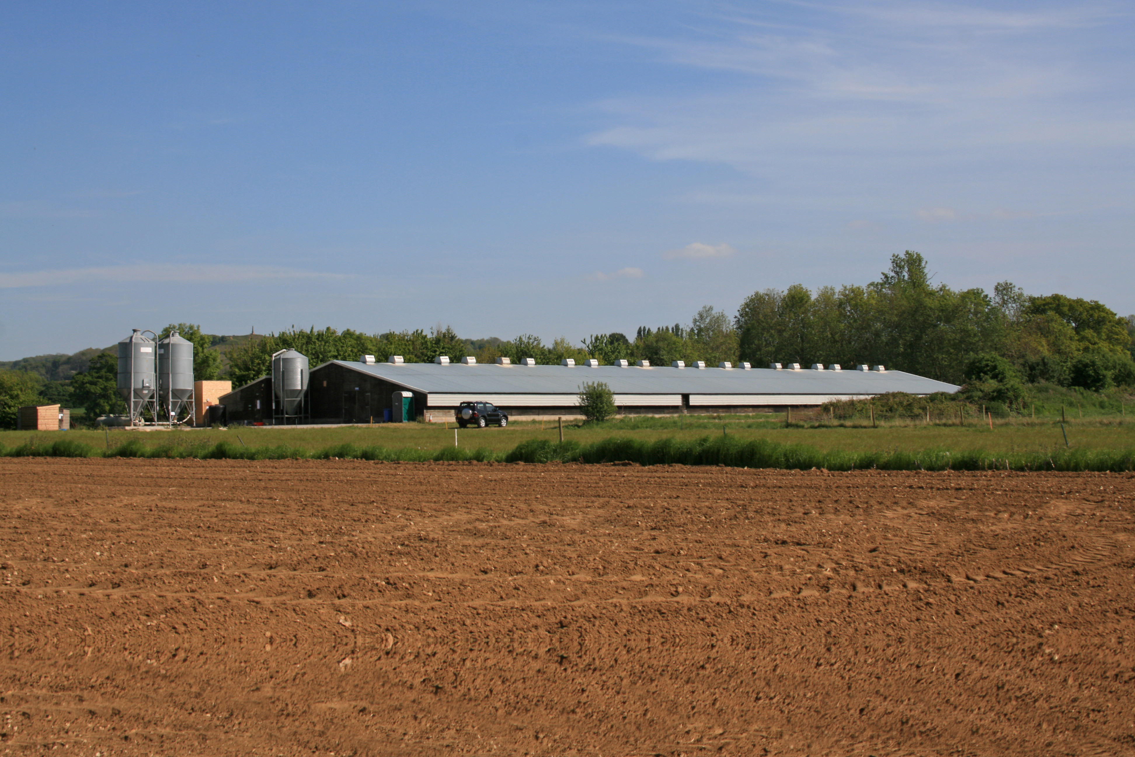 One of the broiler farms now operating as a pullet rearing site. Photo: Poultry World
