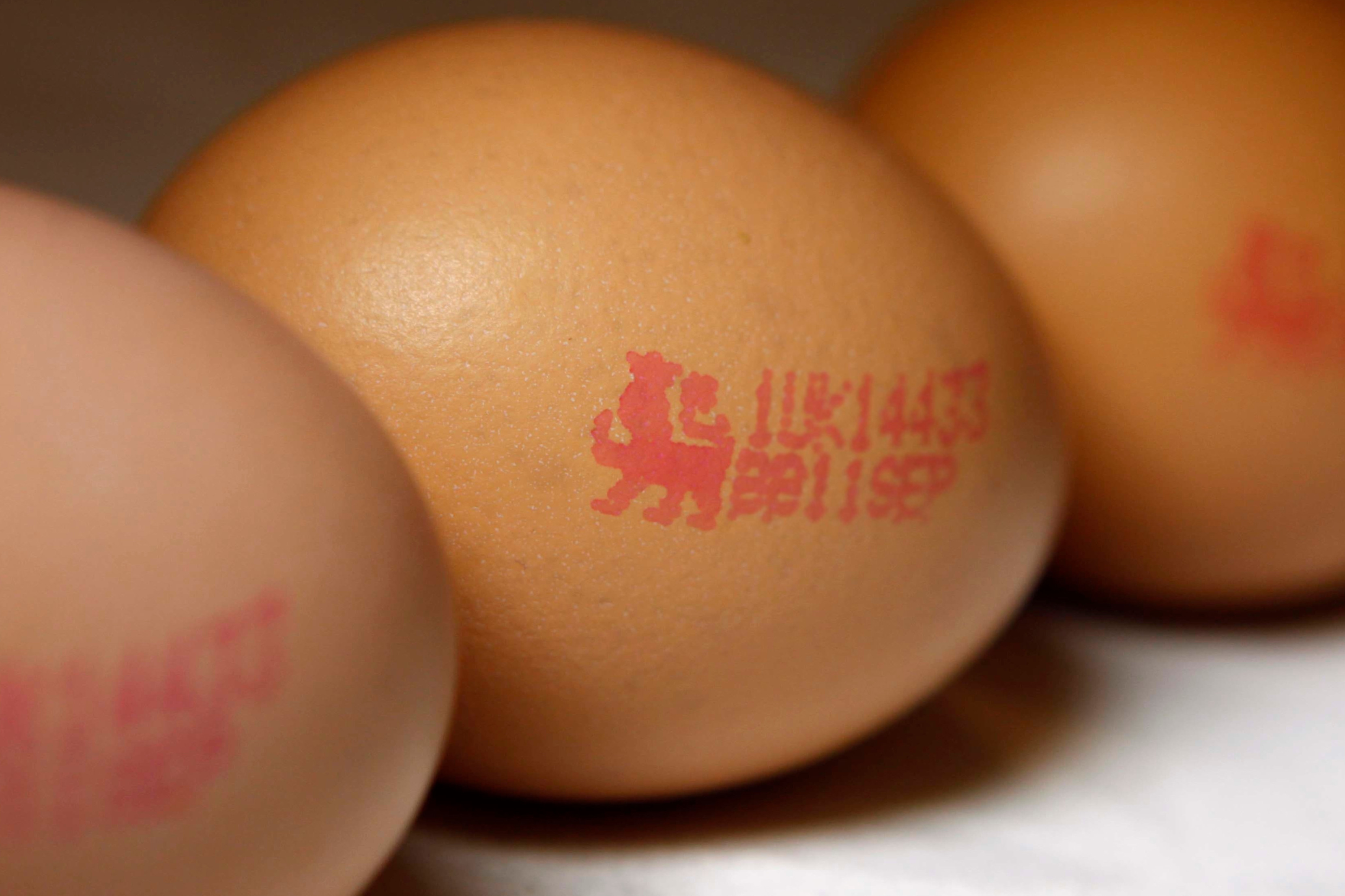 The recall involves Dr Zak's Barn farmed Liquid Egg White, which is produced in France but available across the UK. Photo: Anonymous/AP/REX/Shutterstock