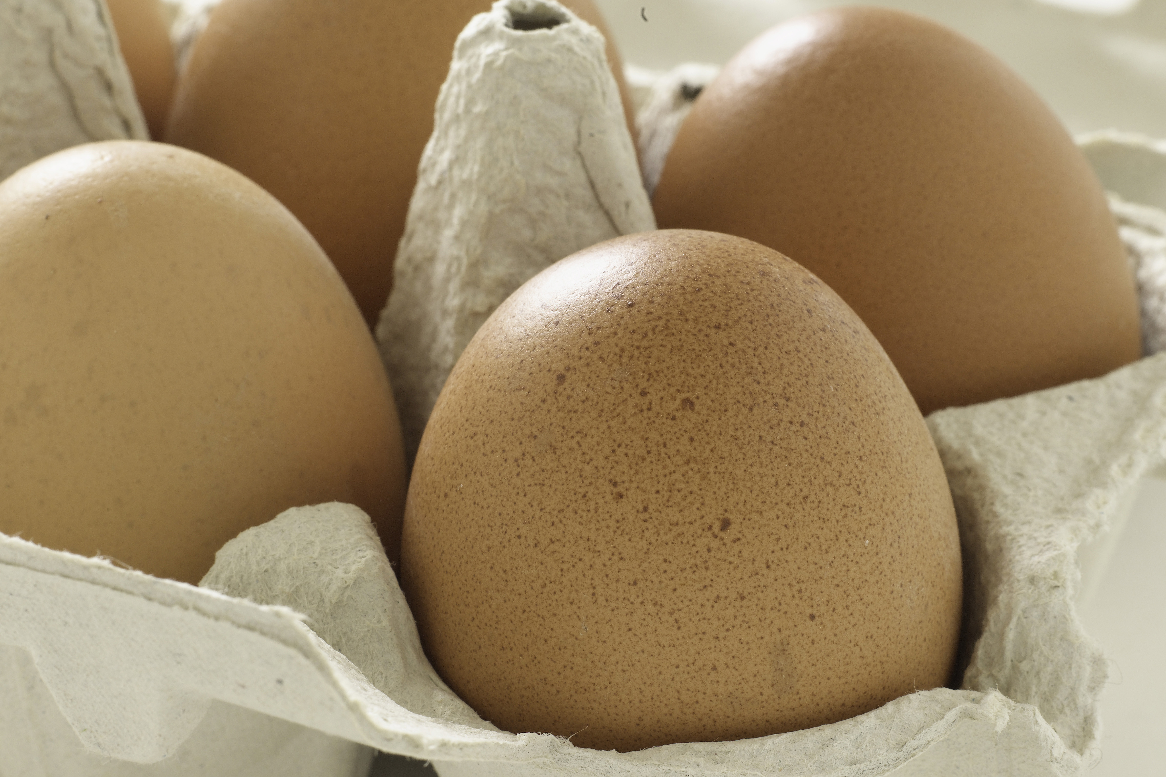 The egg labelling law allows consumers to clearly see if the eggs they're buying have been laid in a cage, barn, free range or organic system. Photo: Food and Drink/REX/Shutterstock