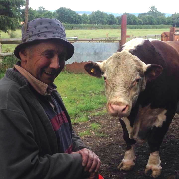 Roger Bowen with a bull