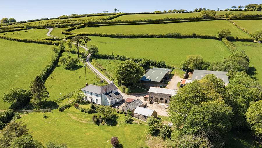 Hollacombe Farm