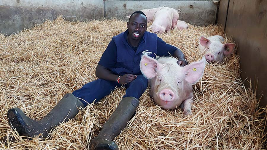 """Flavian Obiero with his favourite sow called """"Nibbles"""" © Oli Hill"""