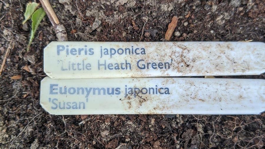 Labels on plants that poisoned sheep