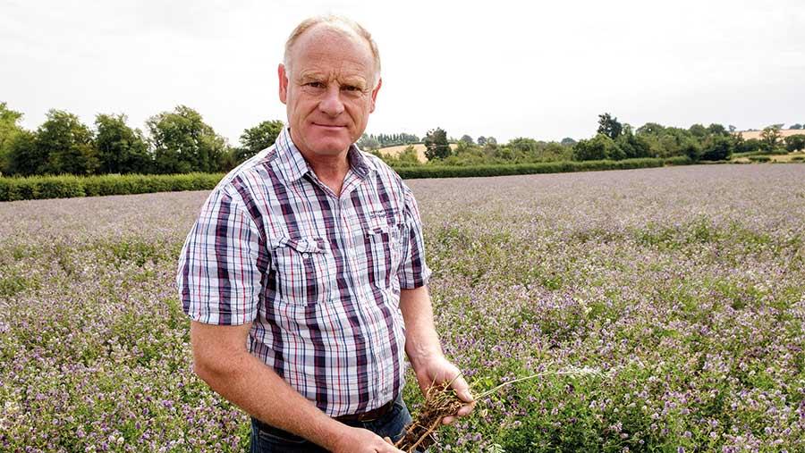 Simon Cowell in field