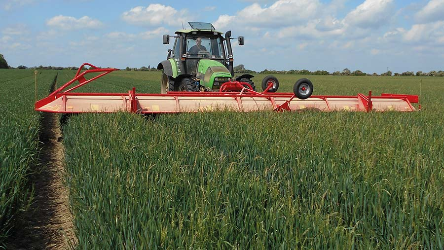 The CTM cutter surfing a crop of wheat
