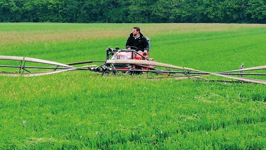 Romain Bouillé mowing blackgrass