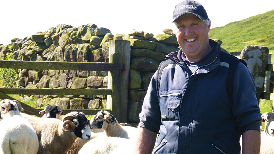 Tim Dunn with sheep behind