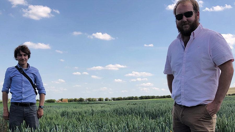 Two men in a wheat field