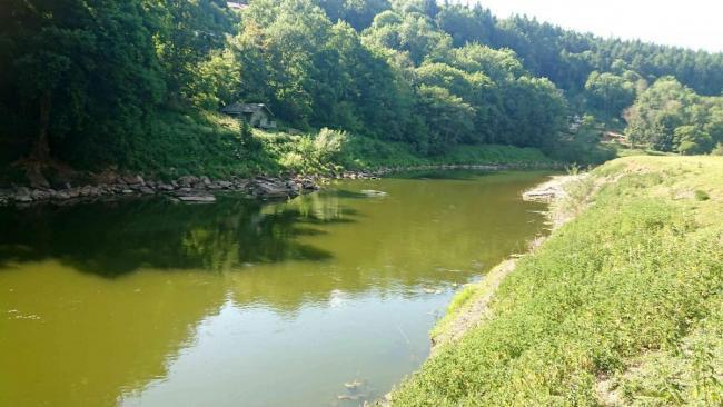 The 'green' Wye River at Redbrook