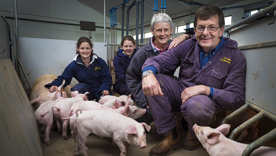 David, Sue, Vicky and Kate Morgan with pigs