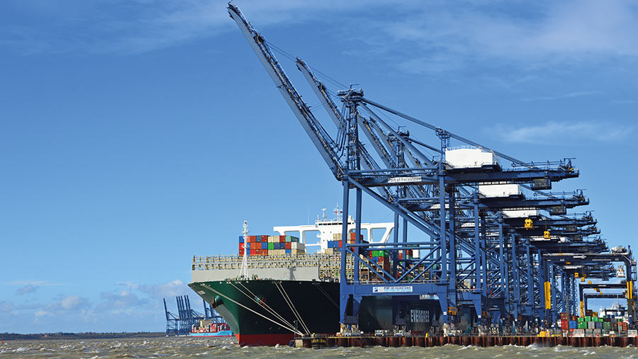 Felixstowe Port © Harlequin9/AdobeStock