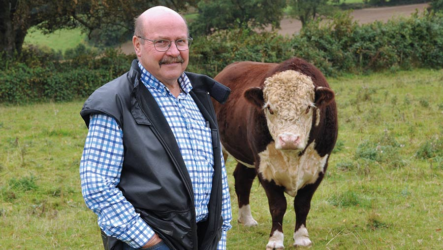 Laurence Harris has used home-bred Hereford sweeper bulls for 20 years © Debbie James