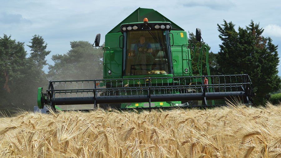 Harvesting at Mike Dennis's Norfolk farm
