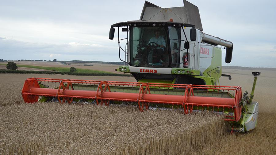Claas combine in wheat field