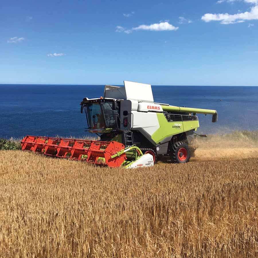 Combine harvester sea view