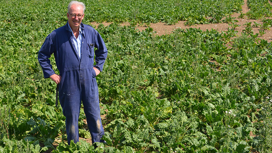 David Fahie in sugar beet crop