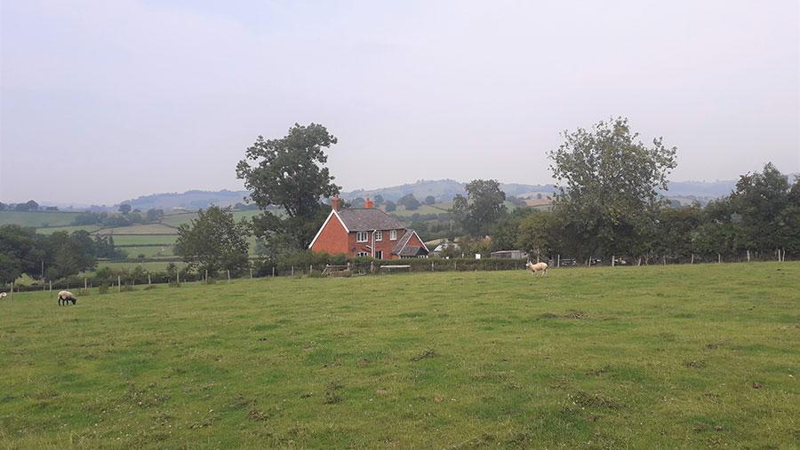 Penbryn farm