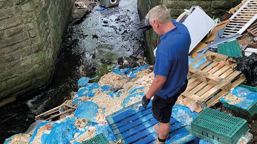 Waste meat dumped in river