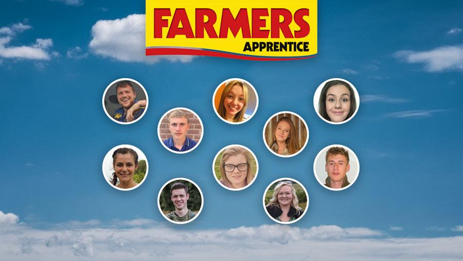Farmers Apprentice finalists