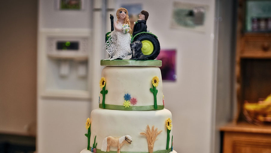 Richard and Kerry Phillipson's farm-themed wedding cake