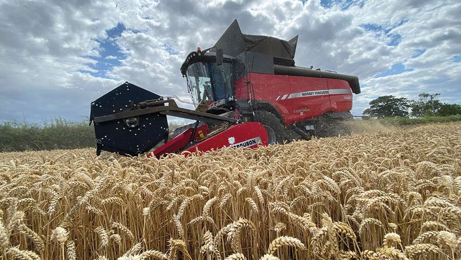 Combine in wheat field