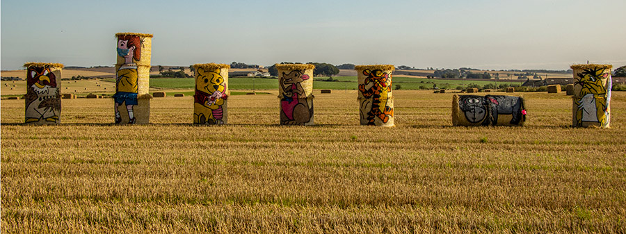 Winnie the Pooh inspired straw bales in field
