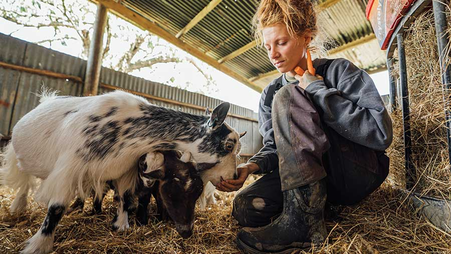 Zoe Colville in a barn with goats
