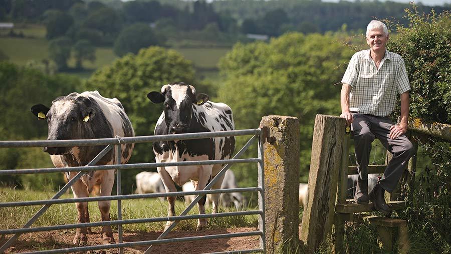 Mervyn Thomas with his herd