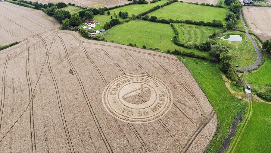 Crop circle in wheat field
