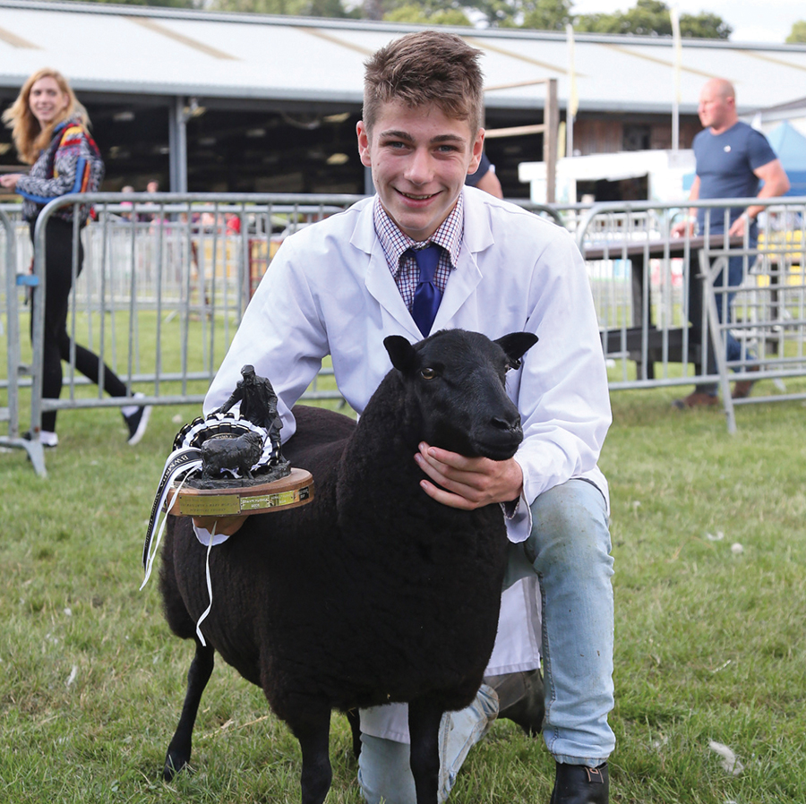 Rory Ferguson with sheep at a livestock show