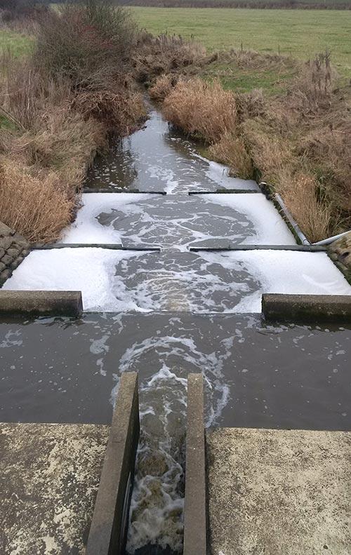 Pollution in Plumpton Mill stream