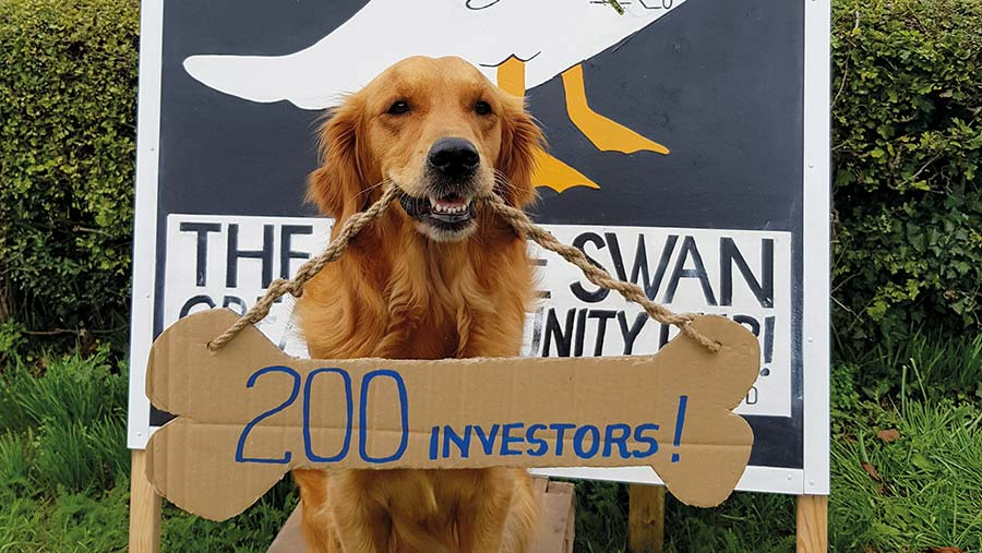 Chilli the golden retriever with a sign around his neck announcing investor totals