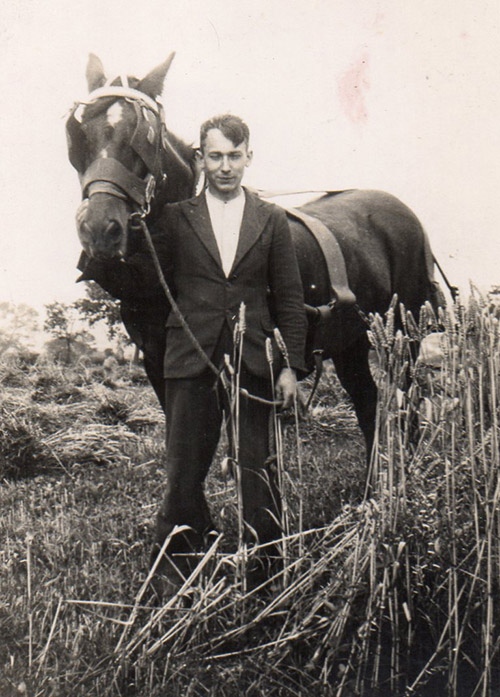 John Wrench with horse in field in 1930s
