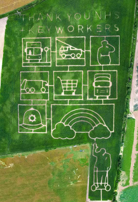 Maize maze showing NHS tribute
