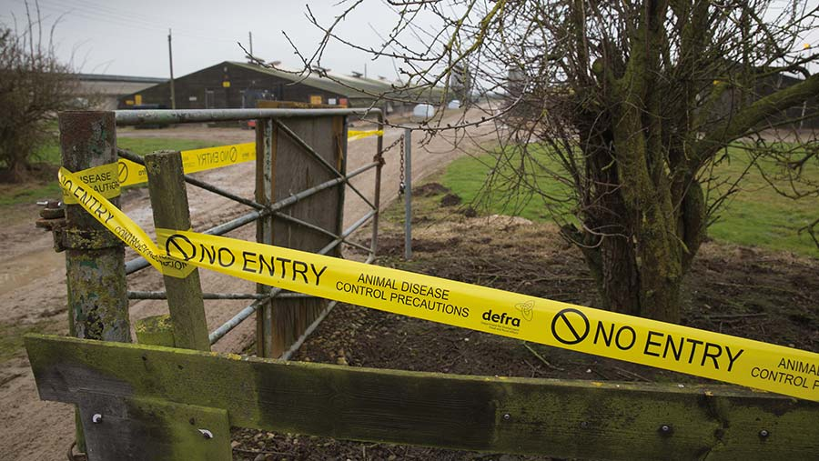 Cordon up after bird flu outbreak