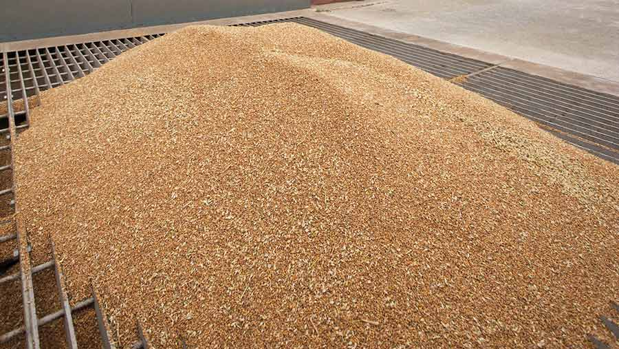 Wheat tipped into grain pit