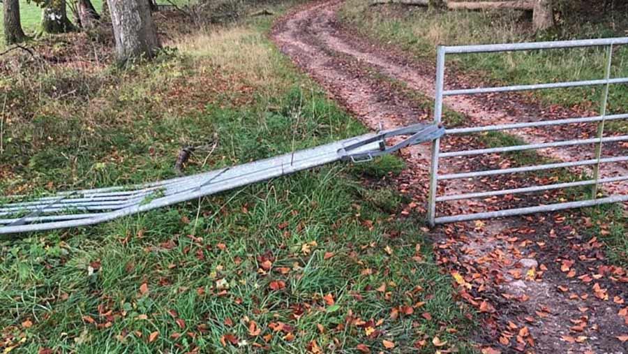 Damaged farm gate