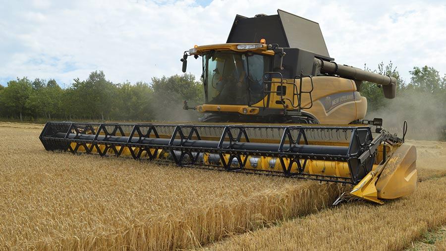 Harvesting spring barley