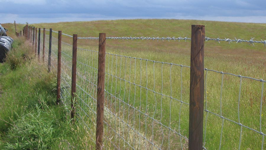 Creosote wooden fence posts and fence