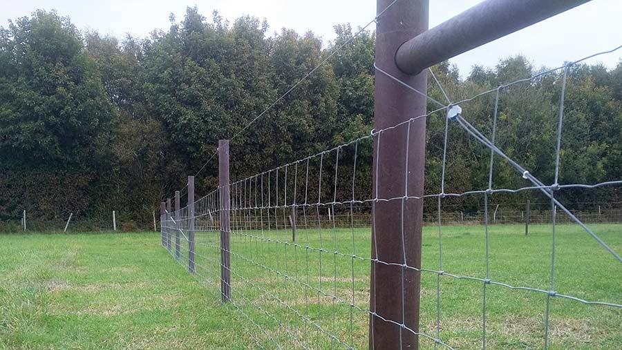 Hahn Plastics Hanit plastic fence posts and fence