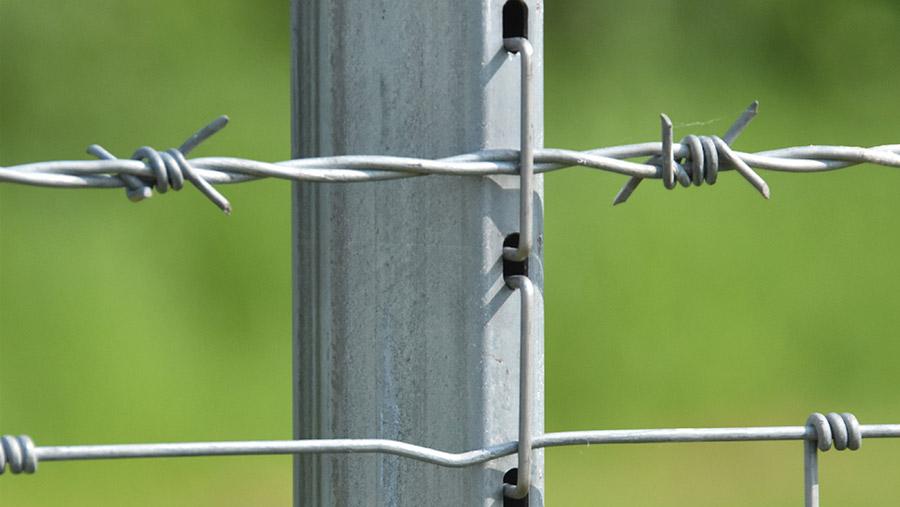 Hampton Steel high-yield steel fence posts